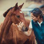 Tierarzt_Mattsee-61-3