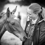 Tierarzt_Mattsee-79